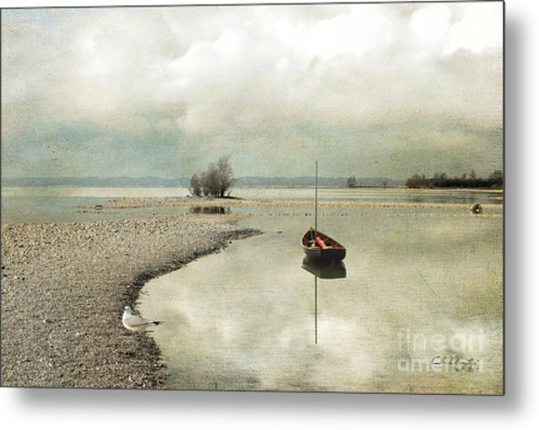 Winter Morning By The Lake Metal Print