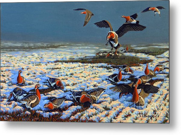 Winter Morning In Primorska Dobrudja Metal Print