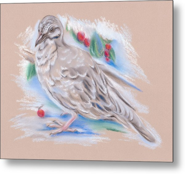 Winter Mourning Dove Metal Print