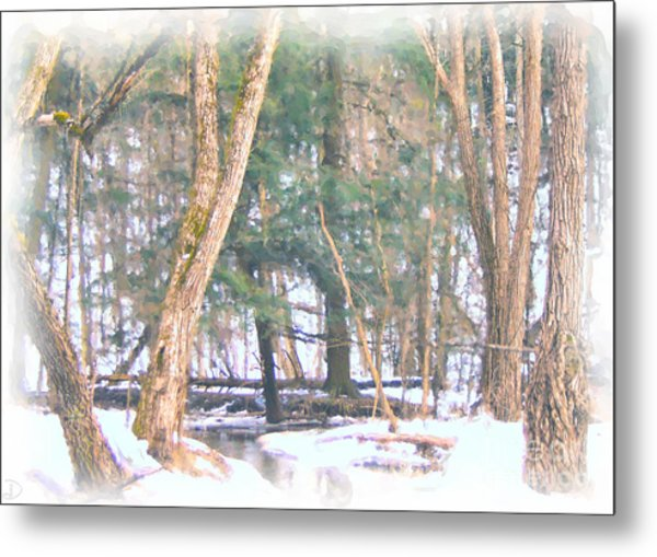 Winter Oasis Metal Print