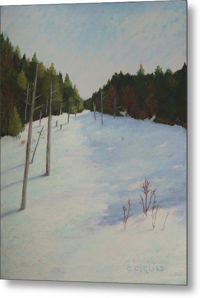 Winter On Moose Pond Metal Print