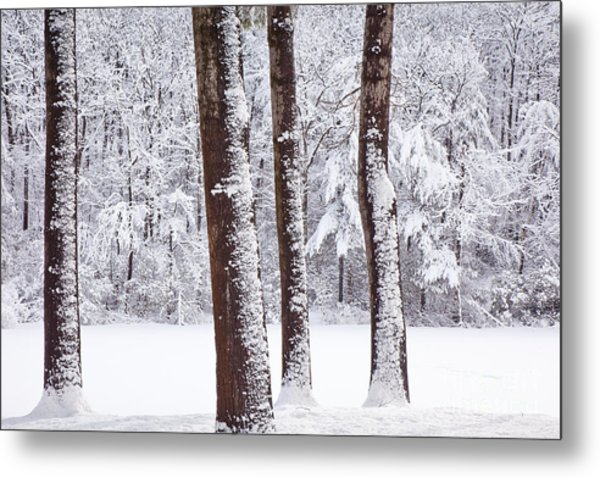 Winter On Paradise Pond Metal Print