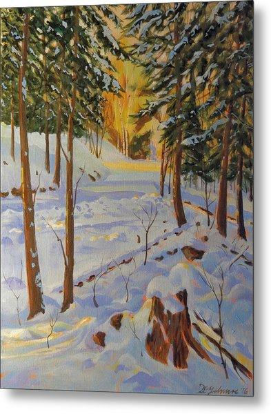 Winter On The Lane Metal Print