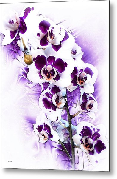 Winter Orchid Metal Print