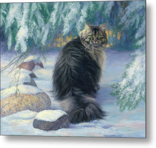 Winter Place Metal Print