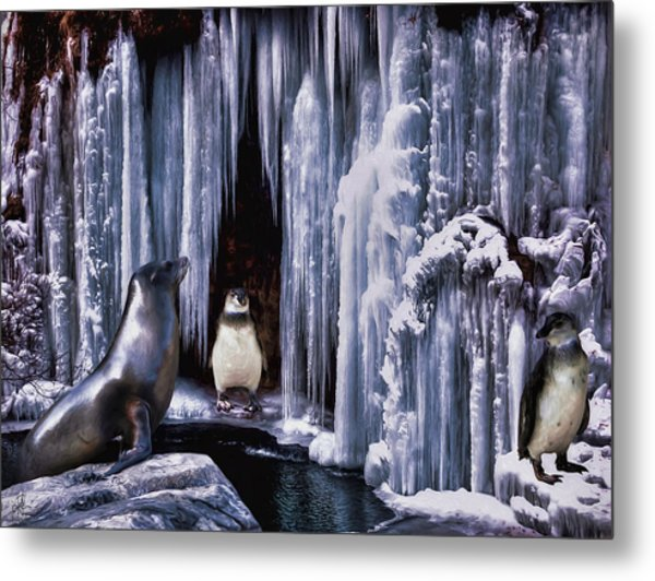 Winter Playground Metal Print