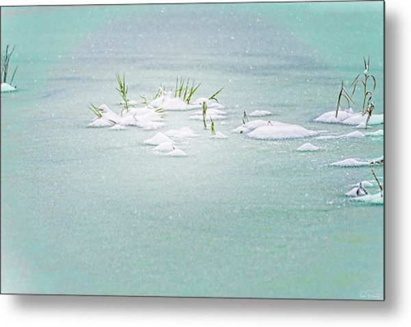 Metal Print featuring the photograph Winter Pond by Dee Browning