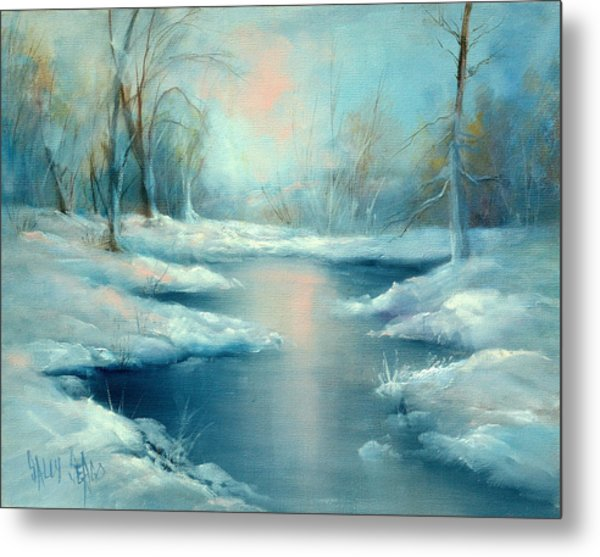 Winter Pond Metal Print by Sally Seago