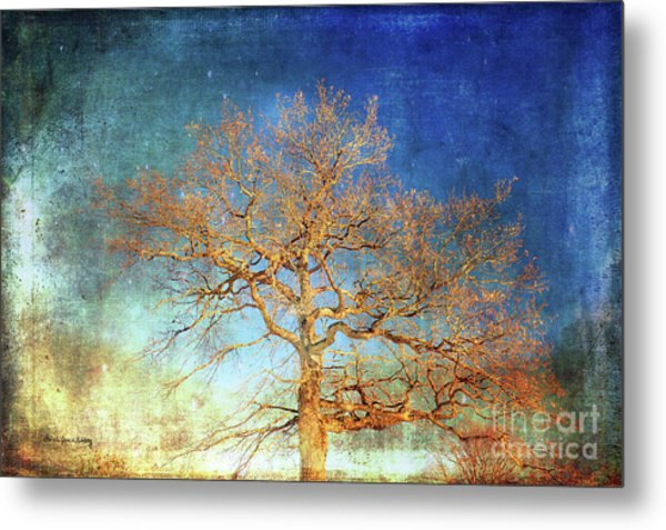 Winter Promise Metal Print