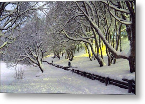 Winter Scene 1 Metal Print by Sami Tiainen