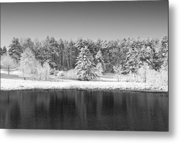 Winter Scene 2 Metal Print by Edward Myers