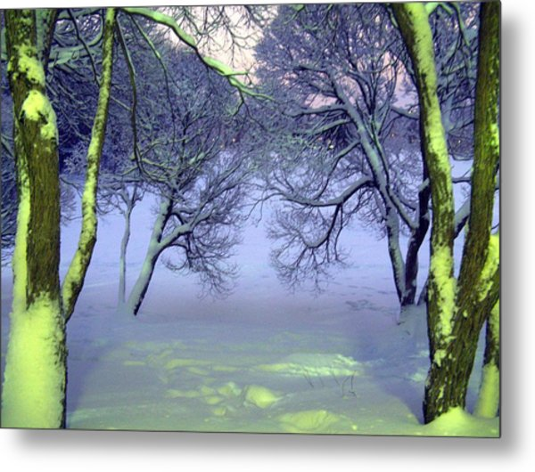 Winter Scene 2 Metal Print by Sami Tiainen