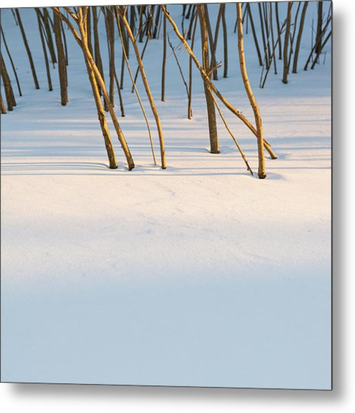 Winter Scene - Abstract Metal Print