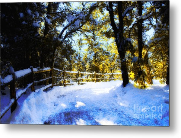 Winter Scene Metal Print by Terry Runion