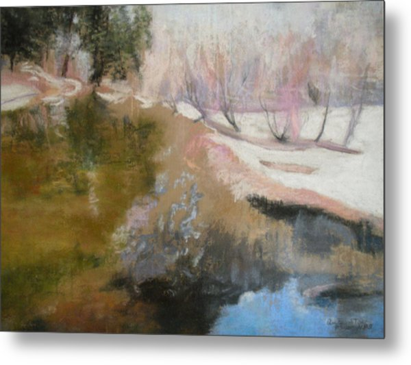 Winter Showoff Metal Print by Anita Stoll