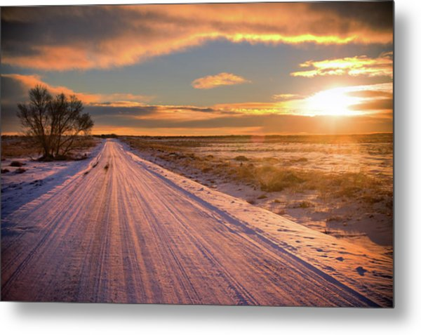 Winter Sunrise Light Metal Print