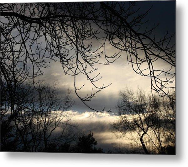 Winter Sunrise Metal Print by Liz Vernand