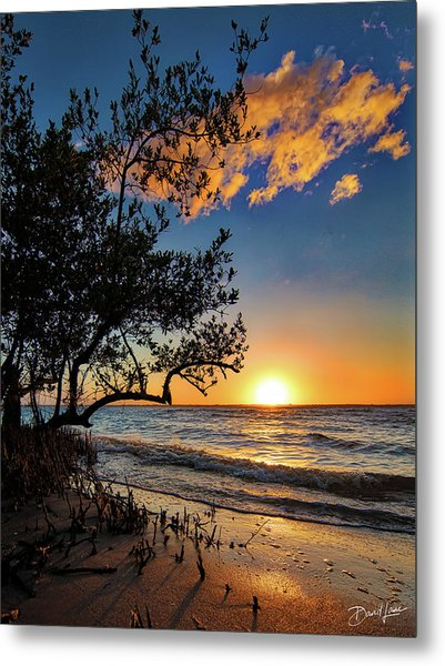 Metal Print featuring the photograph Winter Sunset by David A Lane