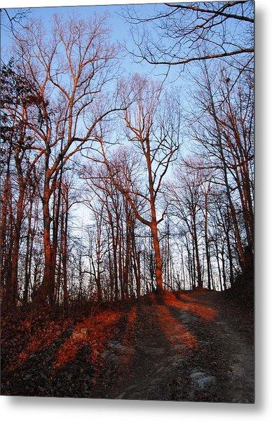 Winter Sunset In Georgia Mountains Metal Print