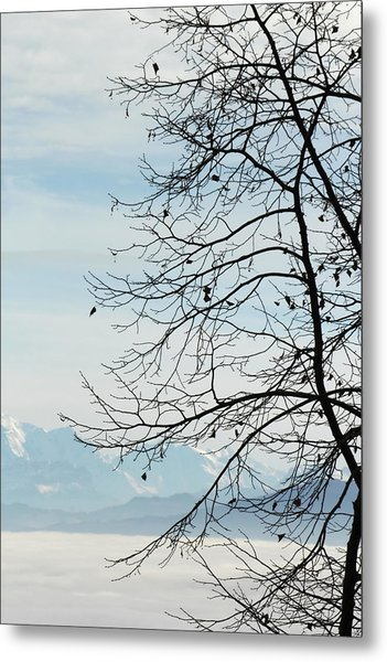 Winter Tree And Alps Mountains Upon The Fog Metal Print