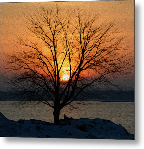 Winter Tree Sunrise Metal Print