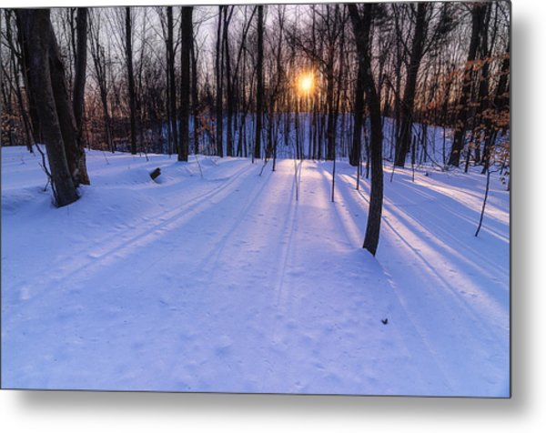 Winter Walks Continue Metal Print