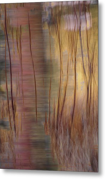 Metal Print featuring the photograph Winter Willows Abstract by Deborah Hughes