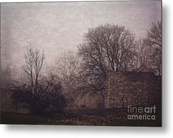 Winter Without Snow Metal Print