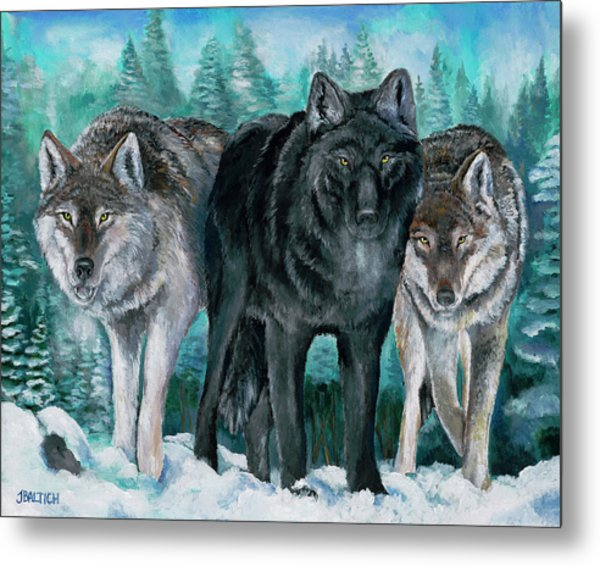 Winter Wolves Metal Print