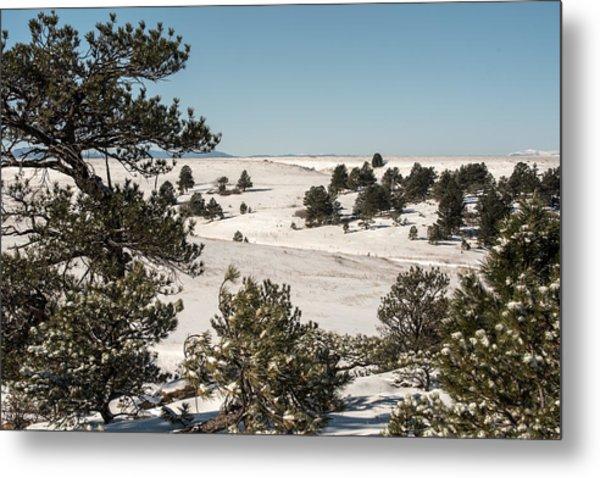 Winter Wonder Land Metal Print