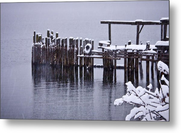 Winterized Metal Print