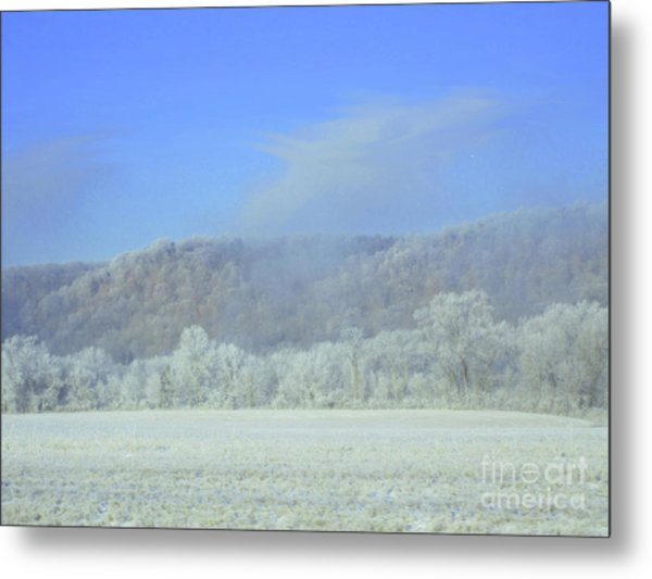 Winter's An Etching... Metal Print