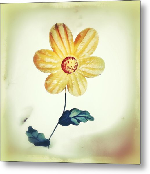 Winters Bloom Metal Print
