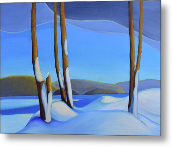 Winter's Calm Metal Print