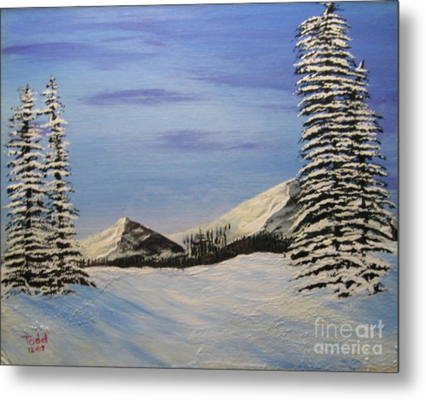 Winters Chill Metal Print by Todd Androy