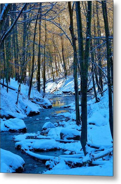 Winter's Cold Touch Metal Print
