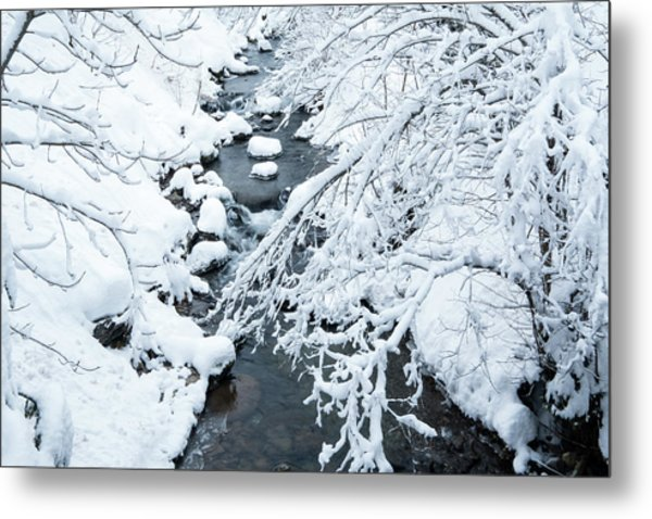 Winters Creek- Metal Print