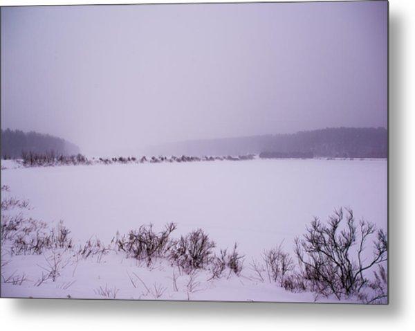 Winter's Desolation Metal Print