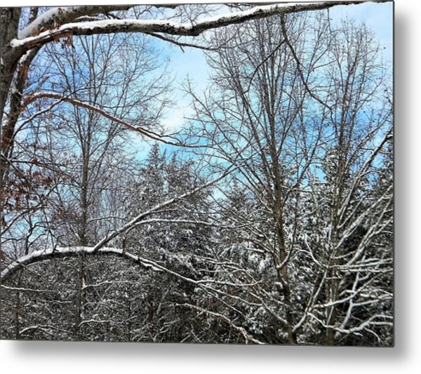 Winter's First Snow Metal Print