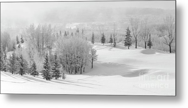 Winter's Gentle Kiss Metal Print