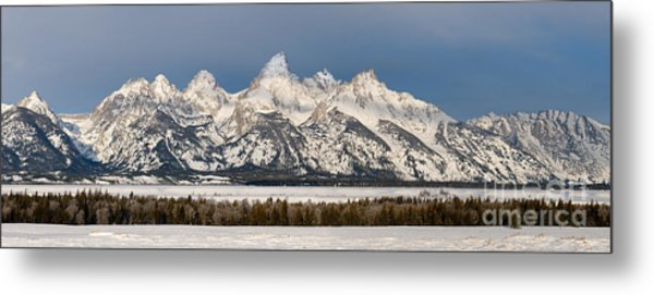 Winter's Majesty Metal Print