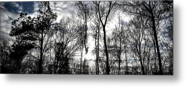 Winter's Mystic Horizon Metal Print