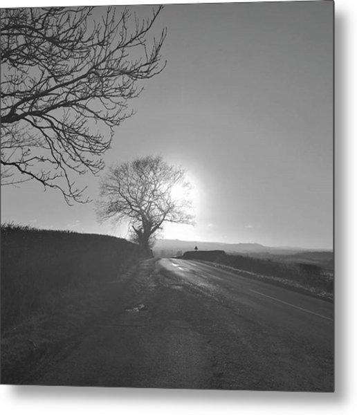 Winter Sun. Metal Print