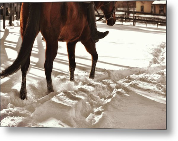 Wintertime Hack Metal Print by JAMART Photography