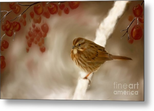 Wintertime Sparrow Metal Print