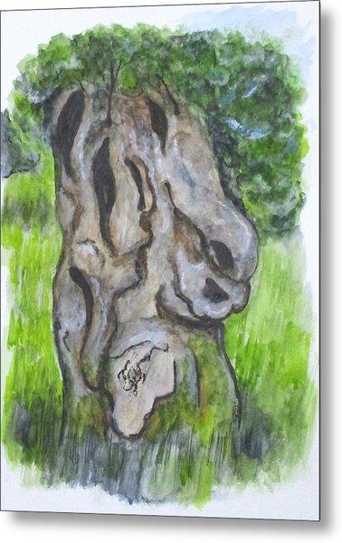 Wisdom Olive Tree Metal Print
