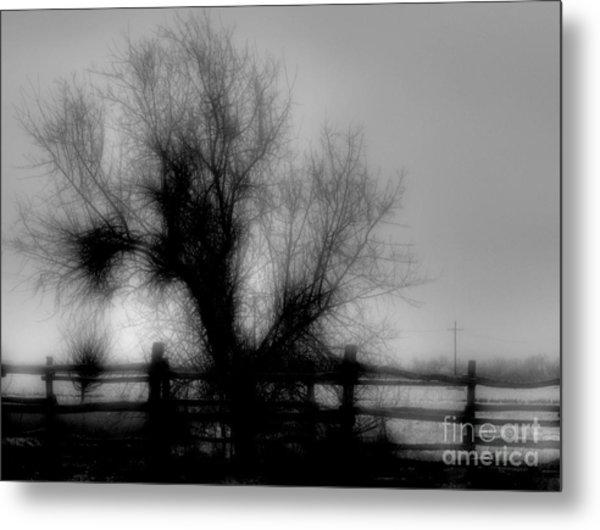 Witching Tree Metal Print