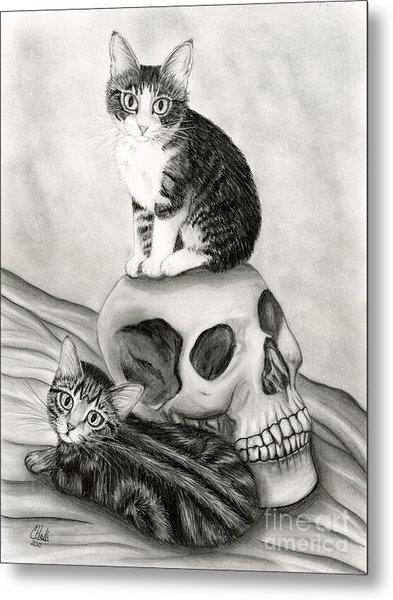 Witch's Kittens Metal Print