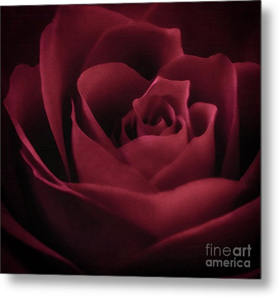 With This Rose Metal Print