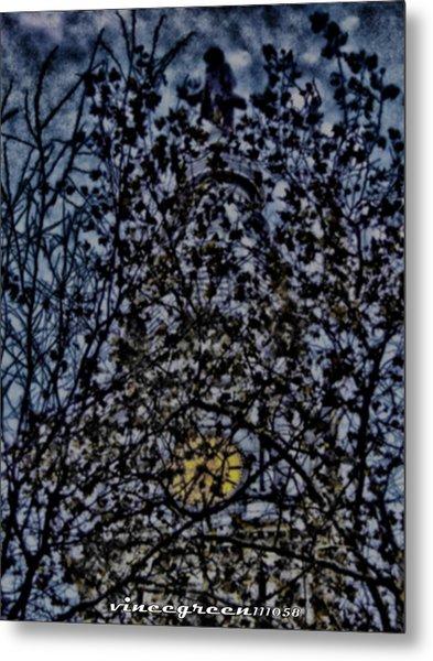 Wm Penn's Woods Metal Print